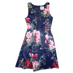 TS1709-1 Dress